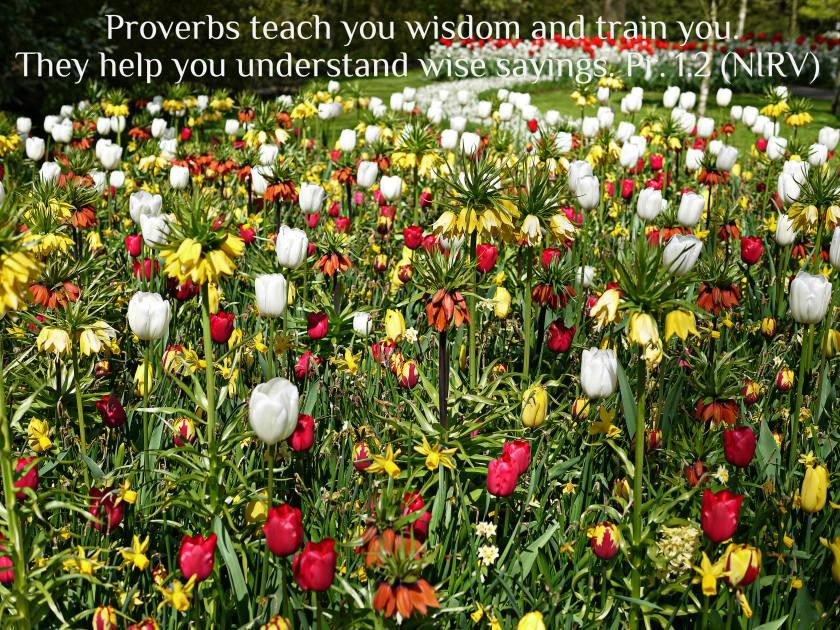 Proverbs 1.2