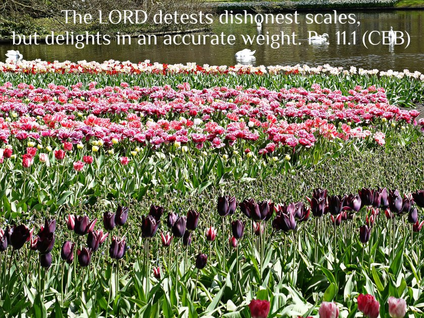 Proverbs 11.1