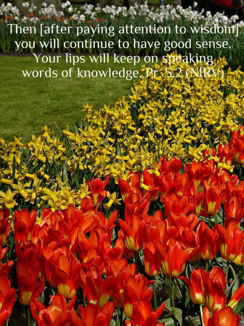 Proverbs 5.2